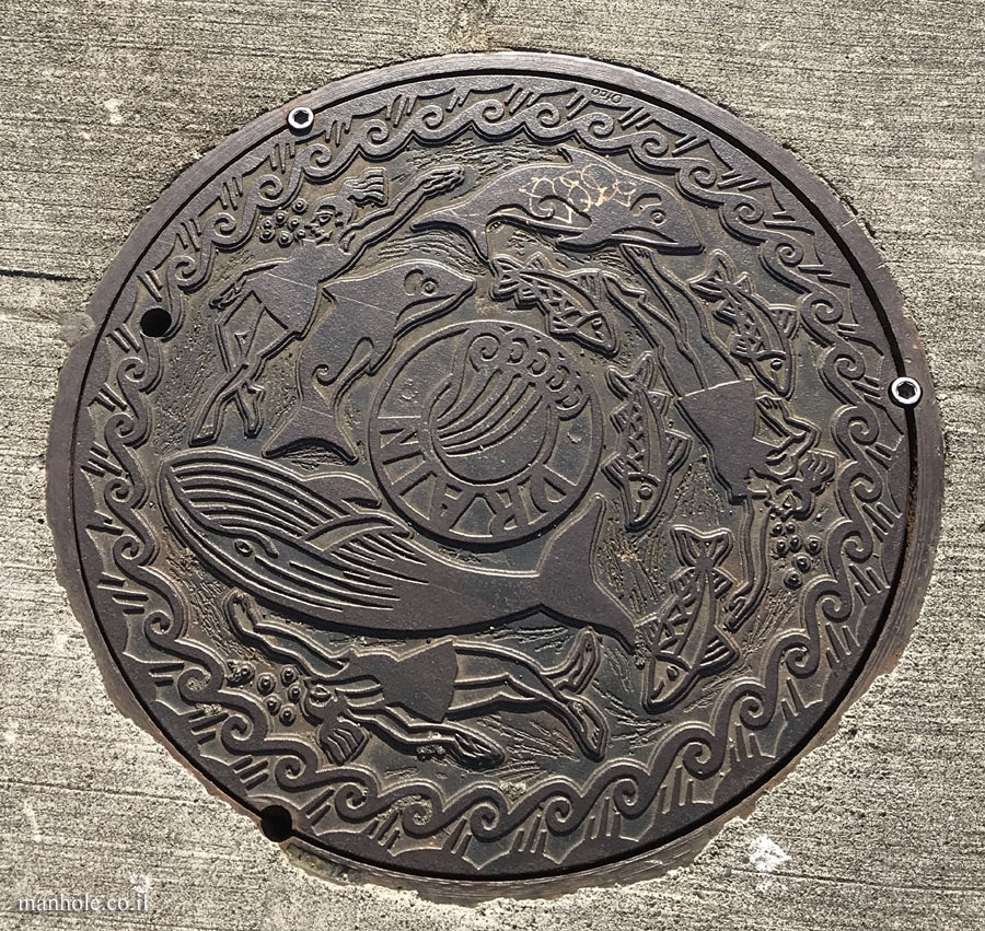 Seattle - Designed drainage cover