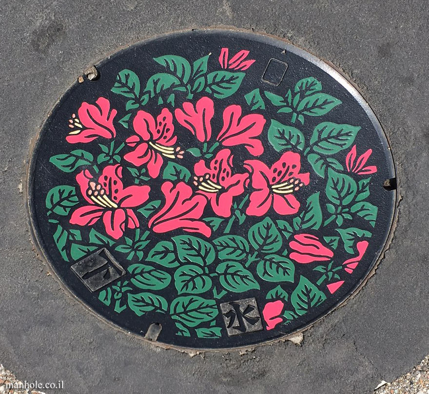 Takayama - A colorful sewage cover with a floral background