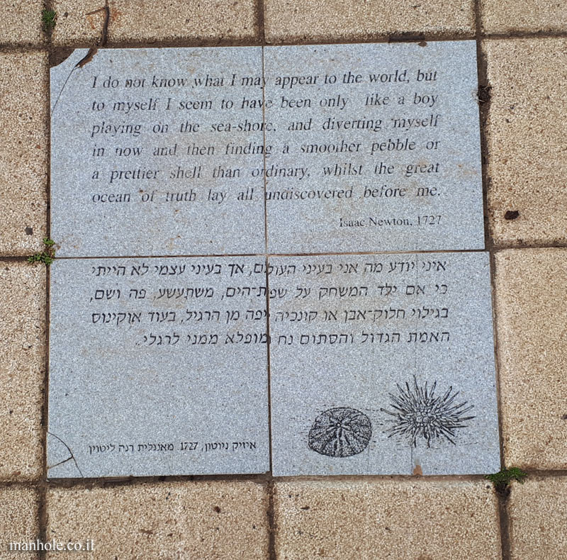 Tel Aviv University - Antin Square tiles - A shell vs  the great ocean of truth (Newton)